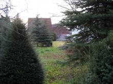 """Erste Besichtigung des Grundstücks Das """"grüne NICHTS"""" [23.02.2008] Grundstück"""
